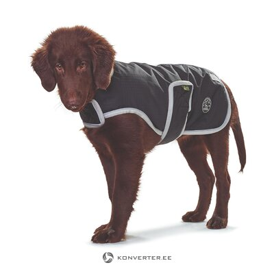 Dog cover (club-de) (healthy sample)