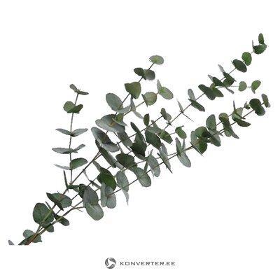 Artificial plant eucalyptus (silk-ka)