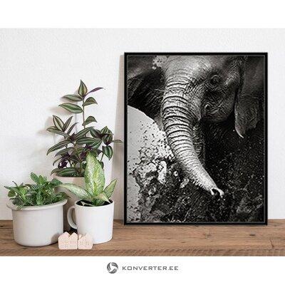 Tapetes zilonis (jebkurš attēls)
