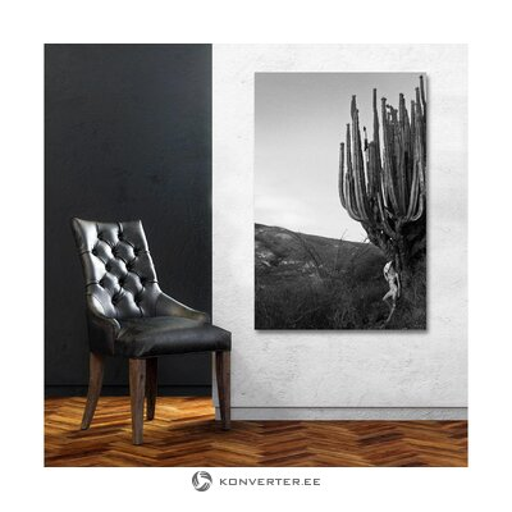 Sienas attēls kaktuss (c-con)