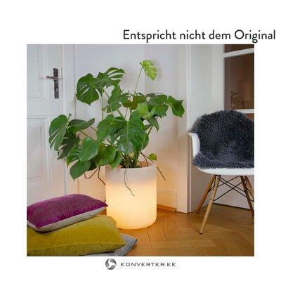 Lillealus LED Valgustusega Elegant Mint (8 Seasons)