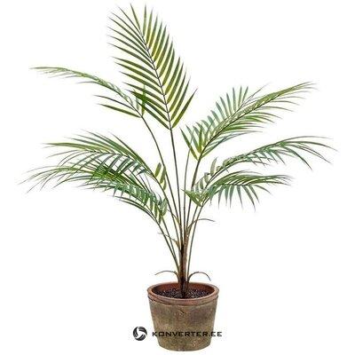 Mākslīgo augu palma (euroflor)