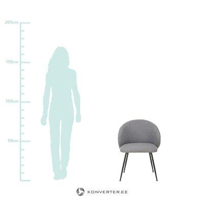 Pelēks-melns krēsls (luisa) (veselīgs paraugs)